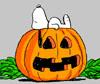 Snoopy Pumpkin